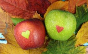 Appel najaar